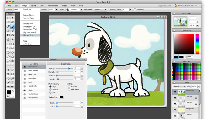 Top 12 Essential Software For Graphic Designers