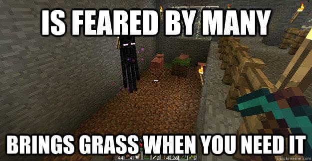 Epic List 100 Minecraft Memes